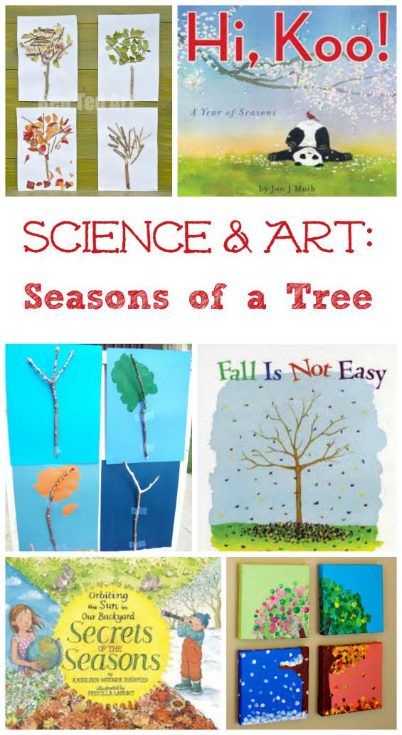 4 seasons of a tree art & science projects