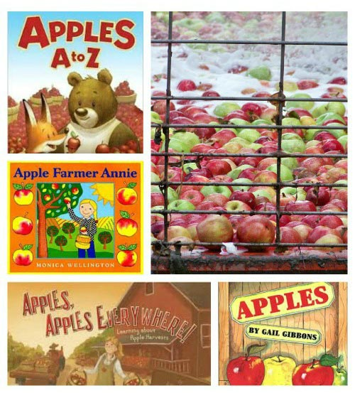 apple books & activities