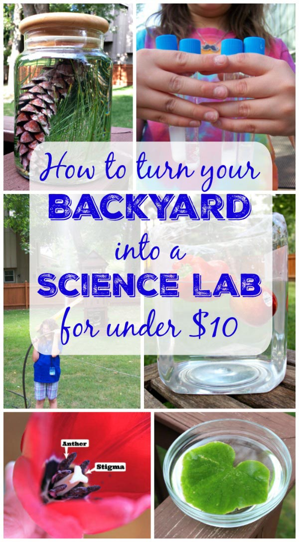 Easy Outdoor science activities perfect for the backyard
