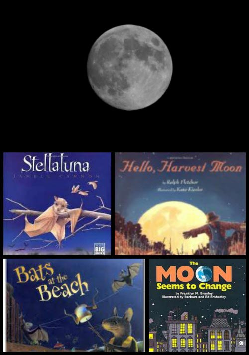 books about the moon and bats