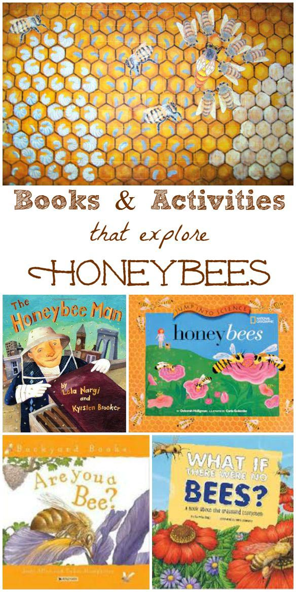 fun facts about honeybees for kids