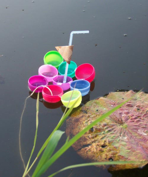 science and water activities for kids to do at the lake or pond