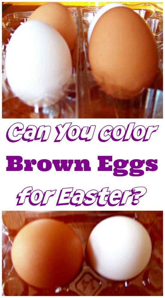 How to Dye Brown Eggs - Easter Science Experiment