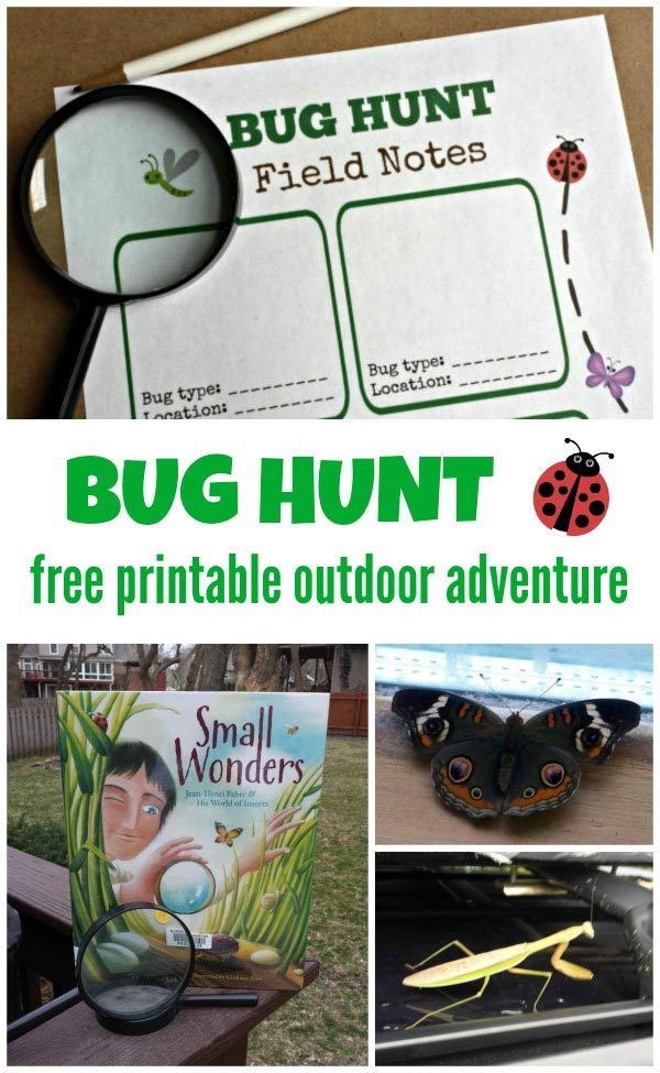 Free Bug Scavenger Hunt for Kids