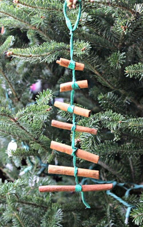 Cinnamon tree ornament