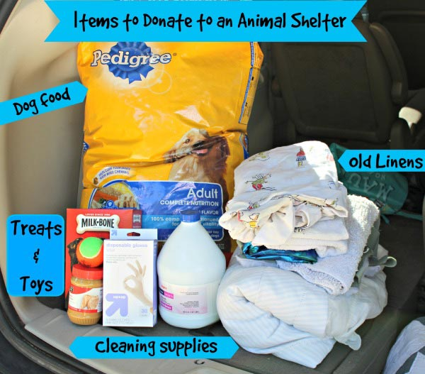 Donations for Animal Shelter #cbias #shop