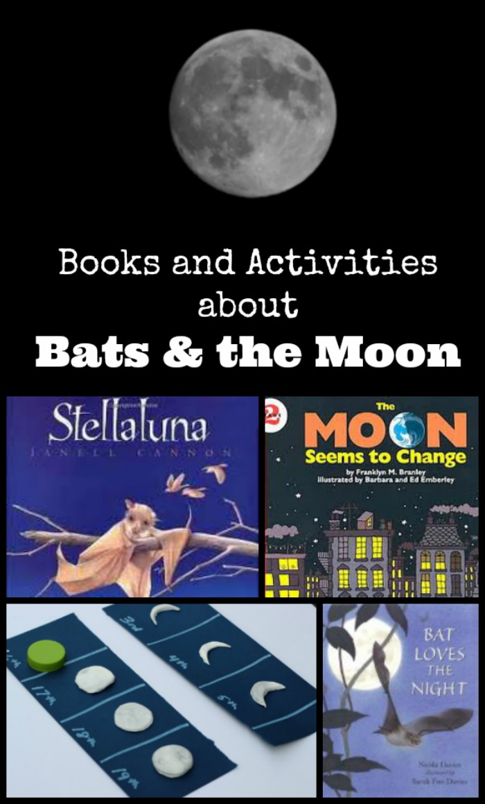 Kids books about bats and books about the moon for children