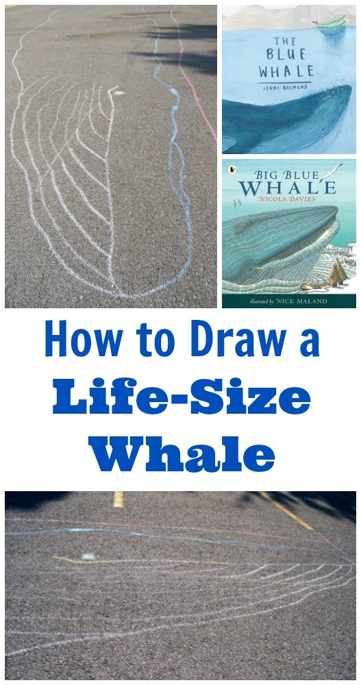 How Big is a Blue Whale? Outdoor Ocean STEM Activity