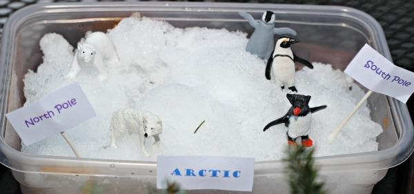 17 Penguin Activities Amp Books For Preschool And Elementary