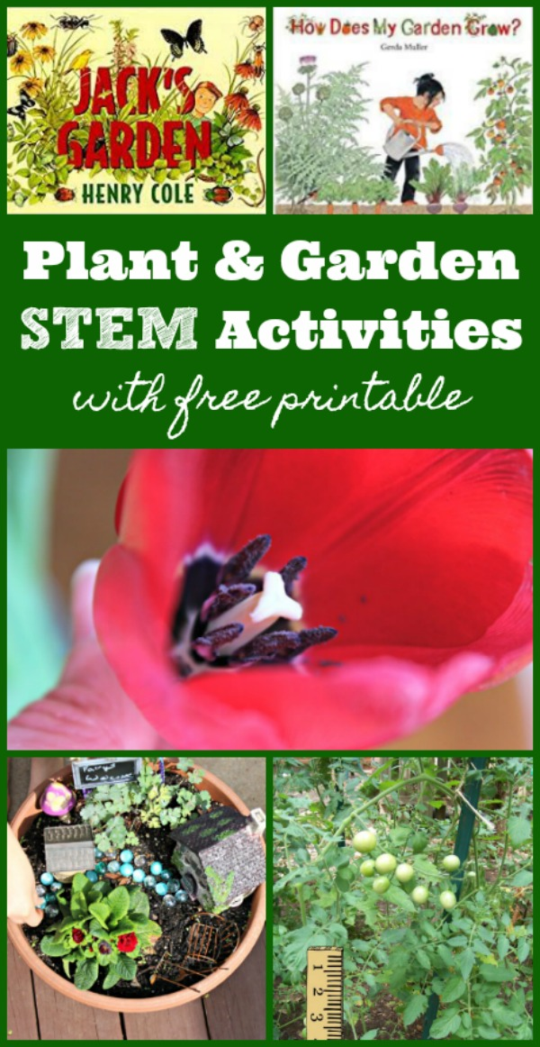 Plant activities for kids and garden science projects