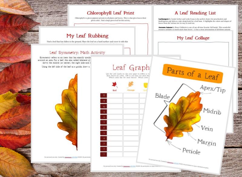Leaf rubbing printable pdf