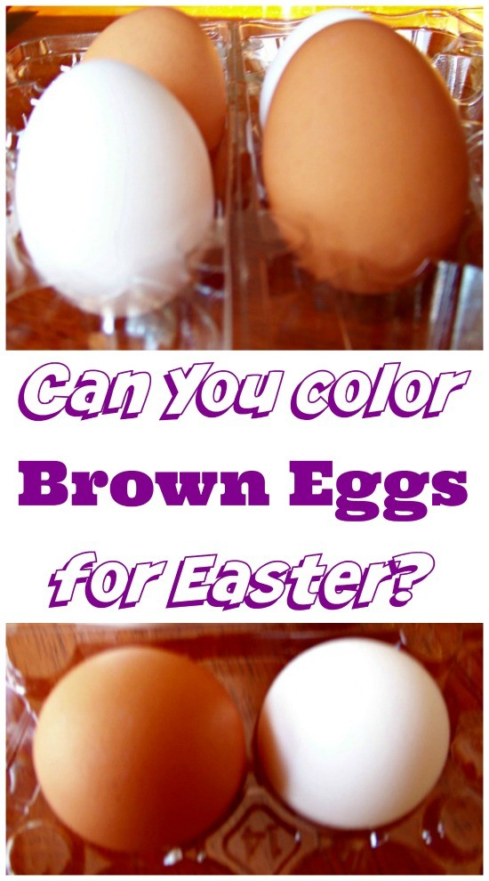 Can You Dye Brown Eggs for Easter?  A Fun Science Project!
