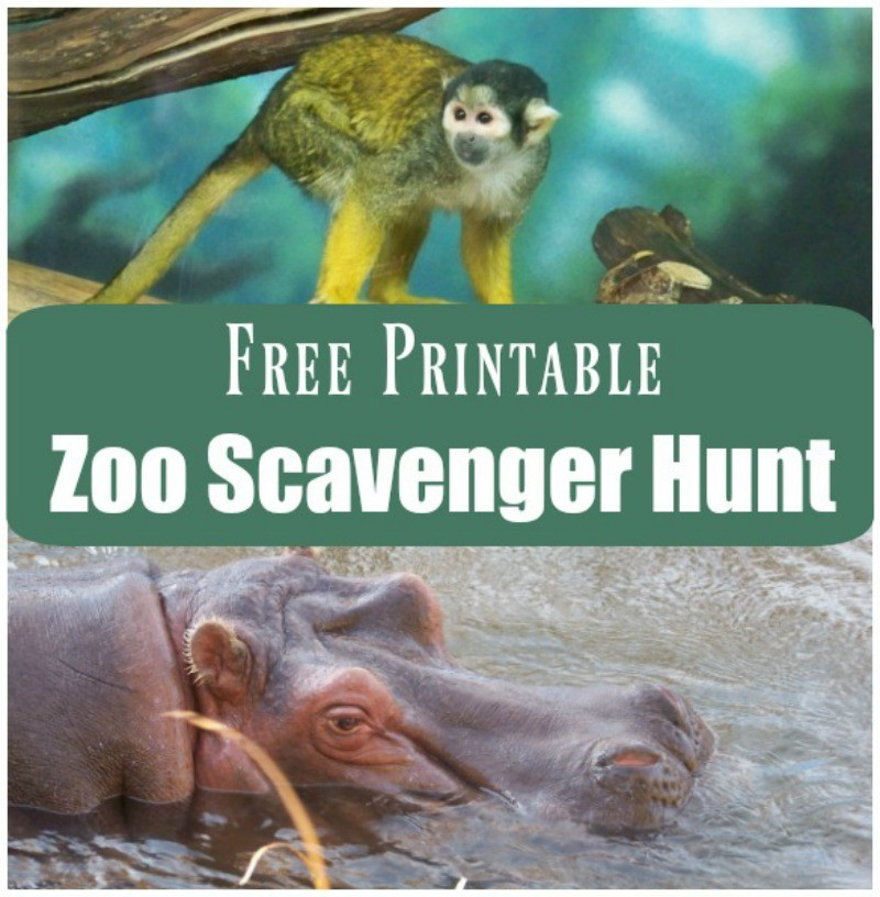 Zoo Animal Activities and scavenger hunt for kids