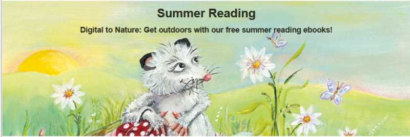 2018 free summer reading programs online