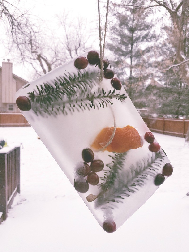 Winter craft ideas for kids - make a nature ice sun catcher