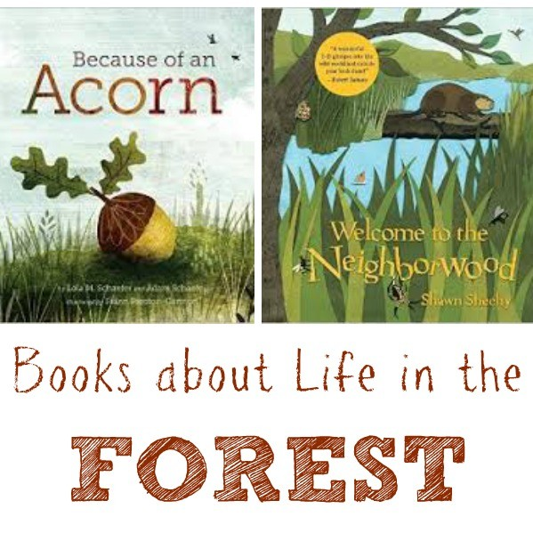 Kids Books about Life in the Forest