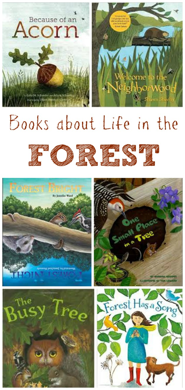 Children 39 s books about the forest edventures with kids for Children s craft books