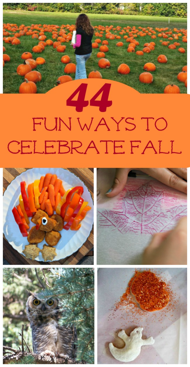 44 Fun Things to do in the Fall with Kids