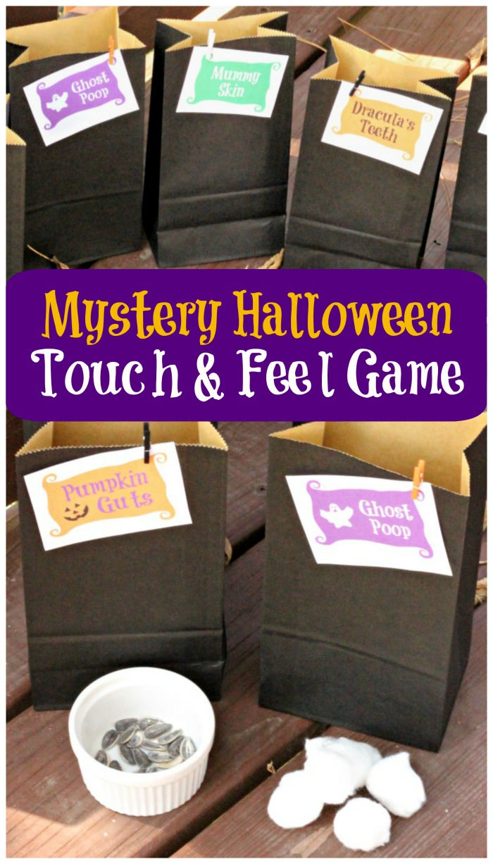 Halloween Mystery Box Ideas - Touch and Feel Game for Kids and Adults