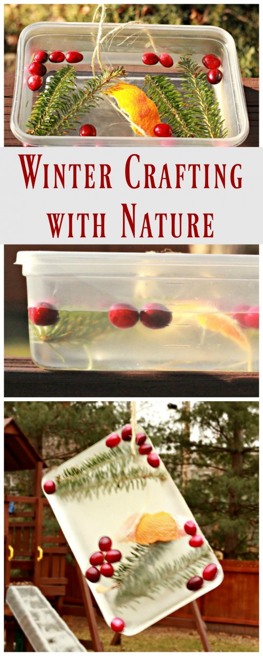 Easy winter craft  - create art from nature items!  Great science activity too.