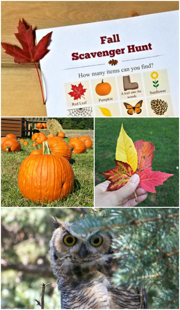 Fall Scavenger Hunt checklist