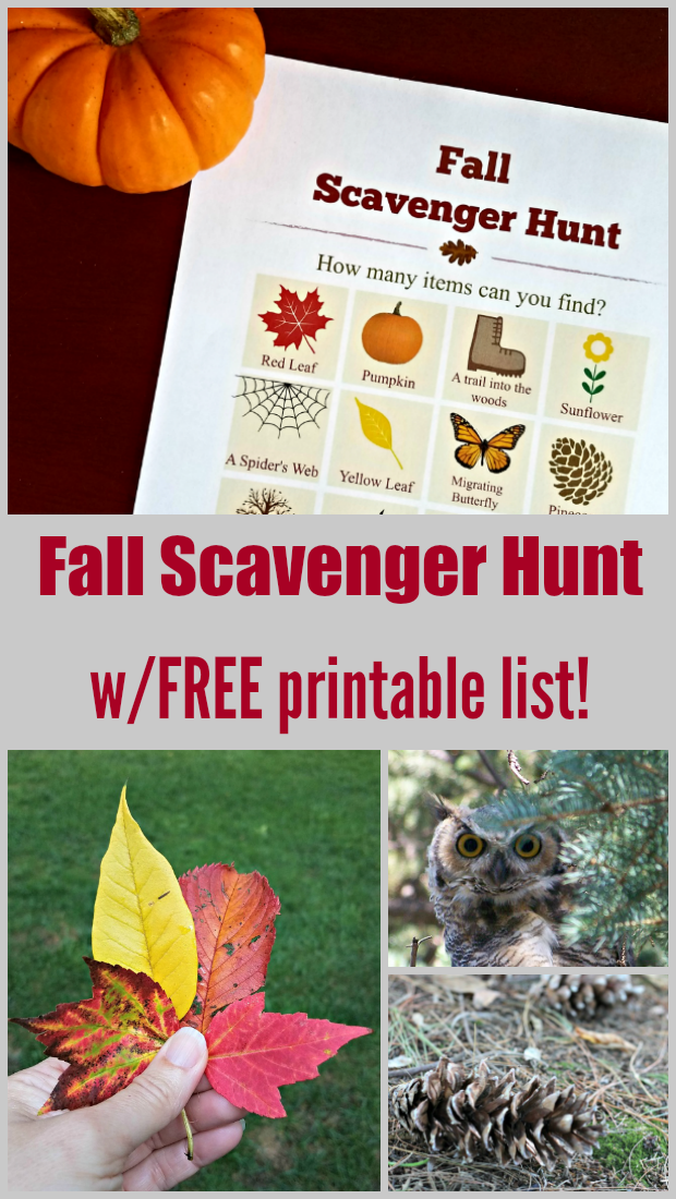 Fall scavenger hunt with printable list of clues!