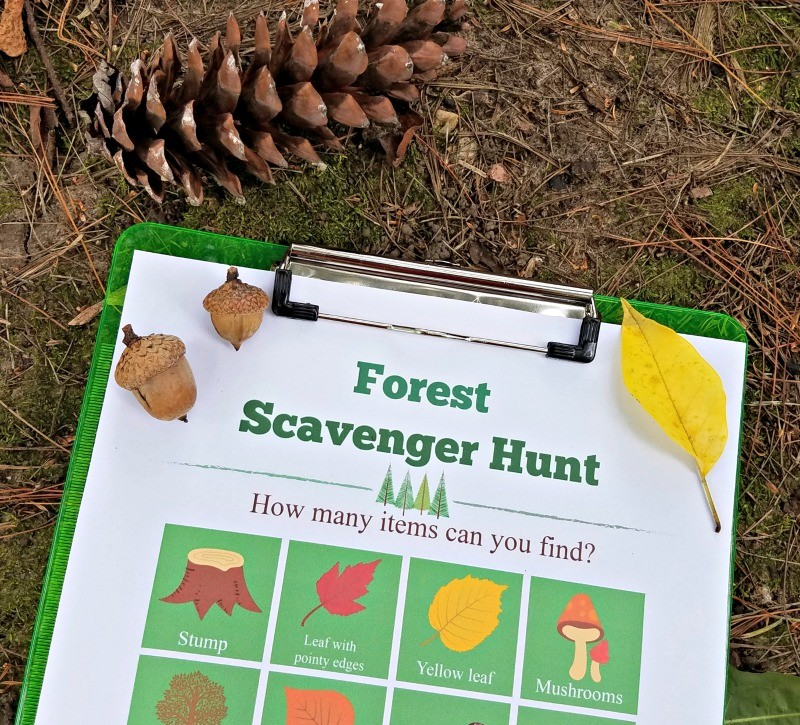 forest-scavenger-hunt-printable
