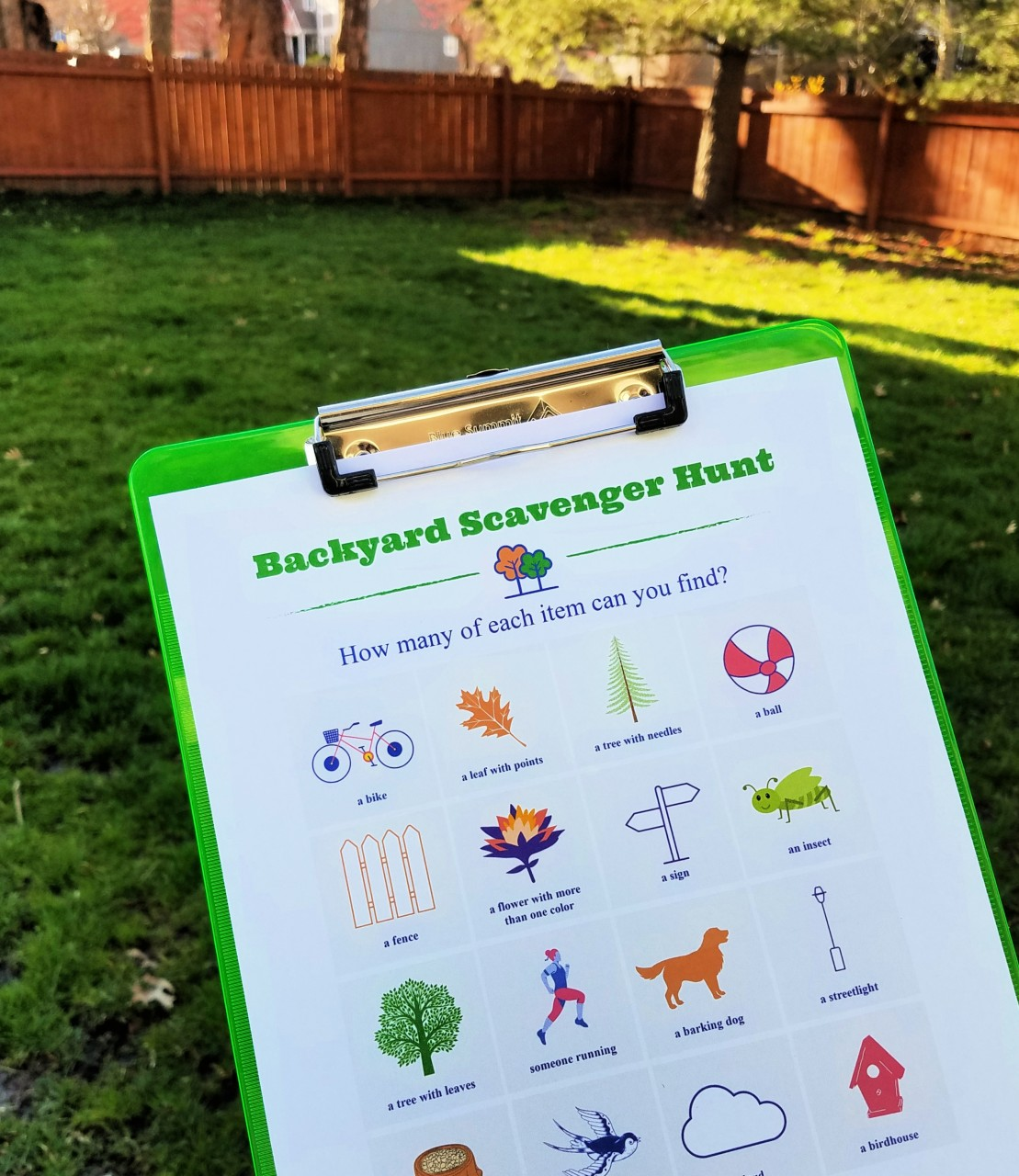 backyard-scavenger-hunt