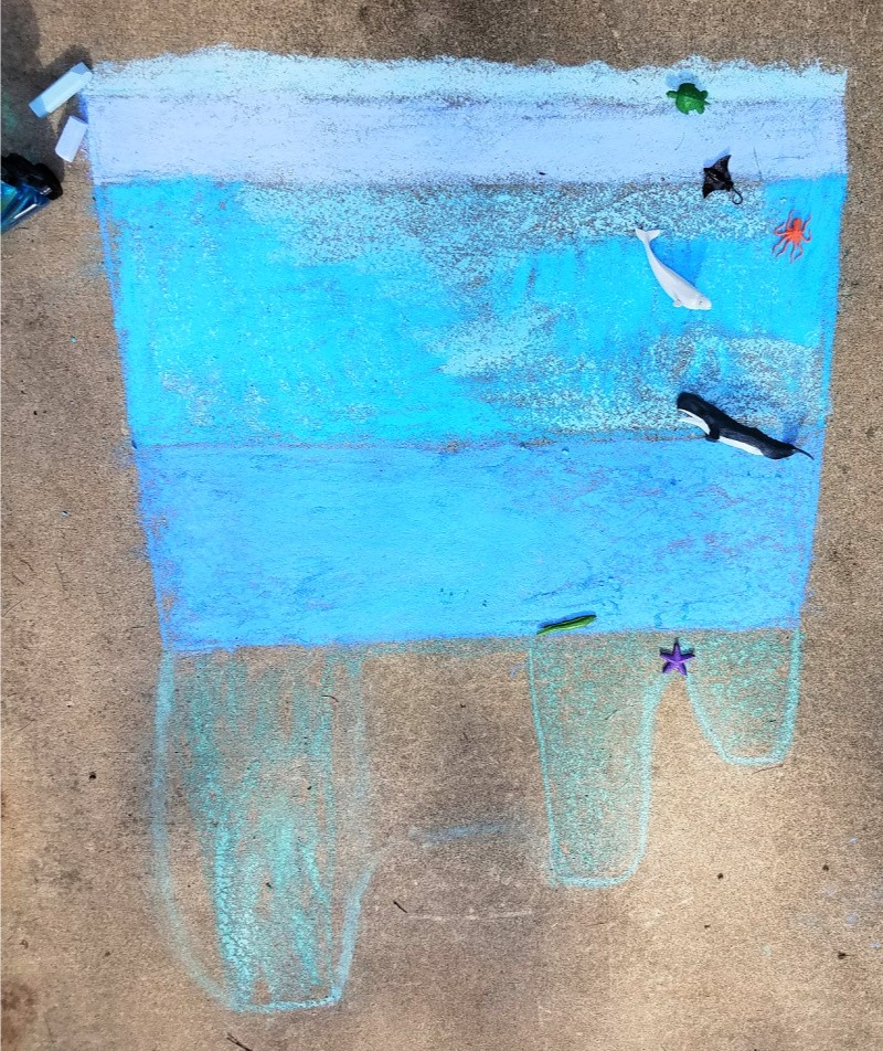 ocean-habitat-project