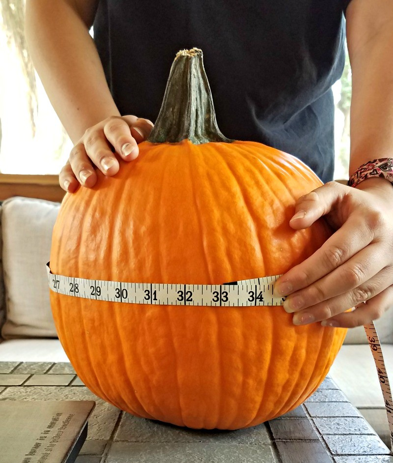 Pumpkin STEM activities for preschool and elementary