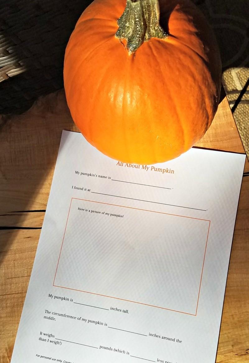 Pumpkin science, math and STEM activities