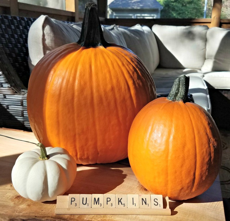 Easy activities to do with a pumpkin