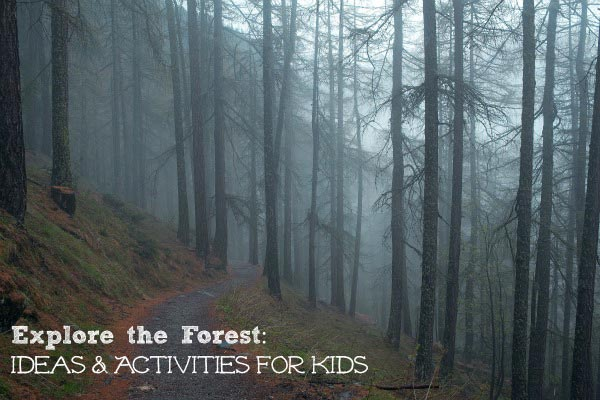 forest activities for kids, tweens & teens