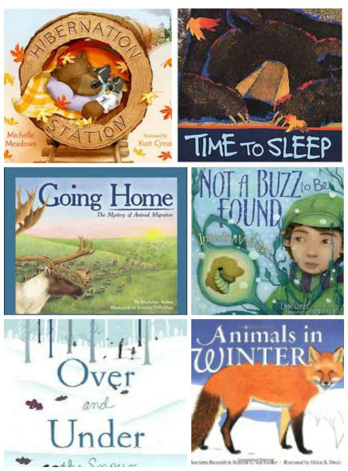 books about hibernation