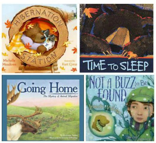 hibernation books and activities