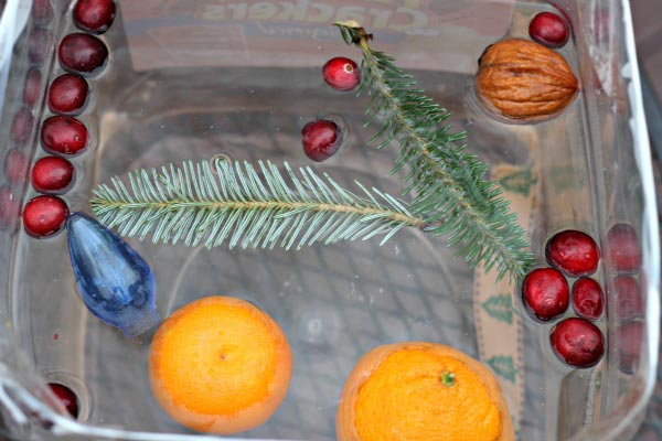 holiday science exeriment using Christmas items