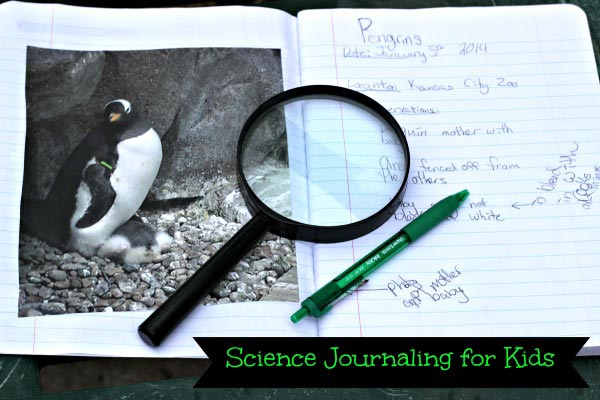 science journaling for kids