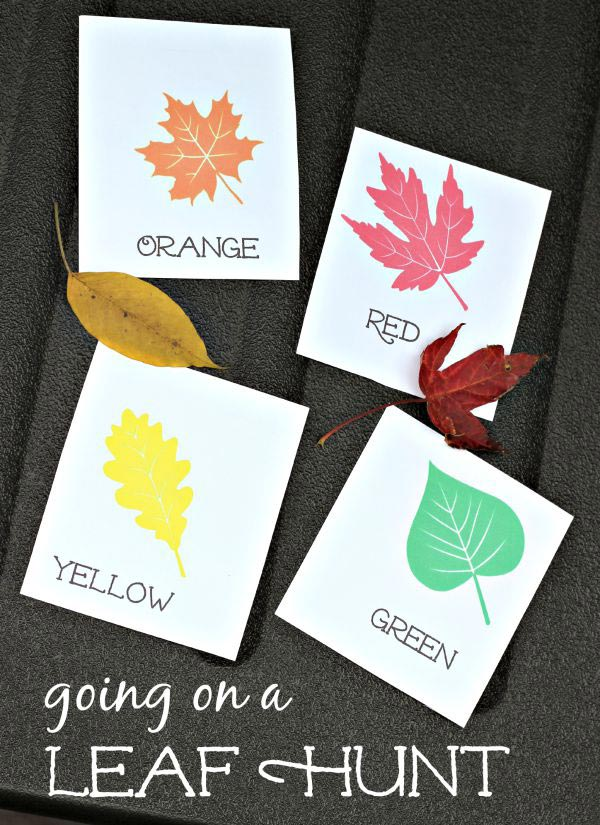 leaf scavenger hunt free cards!