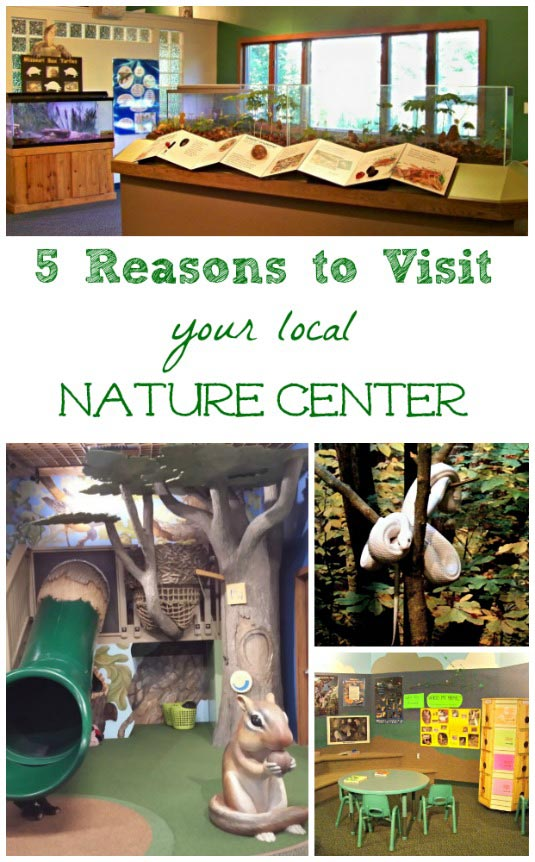 Fun activities and where to visit a nature center near me!