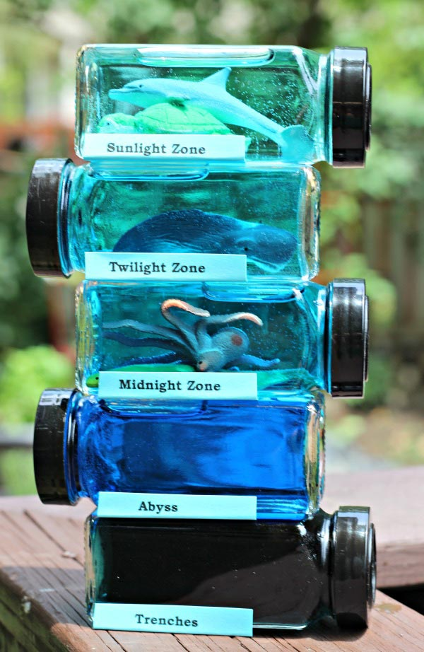 Teach kids about ocean zones and layers with this ocean in a jar activity!