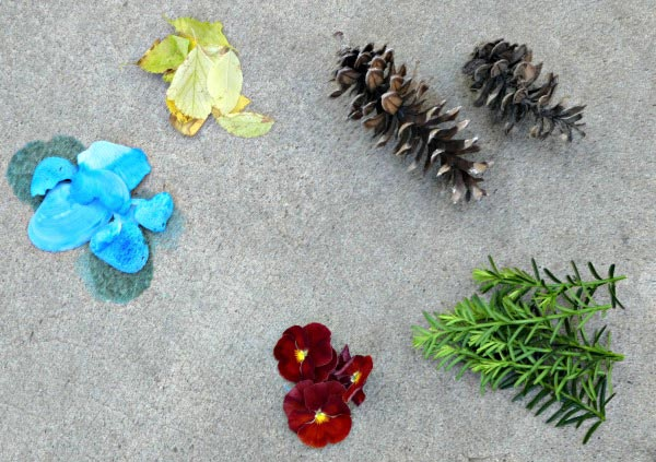 Outdoor nature craft for kids -- Create the Olympic Rings