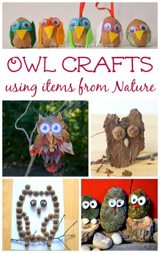 owl crafts for kids to make with items from nature