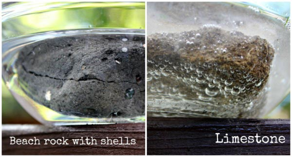 Rocks and minerals: rock testing with vinegar! Fun geology project for kids