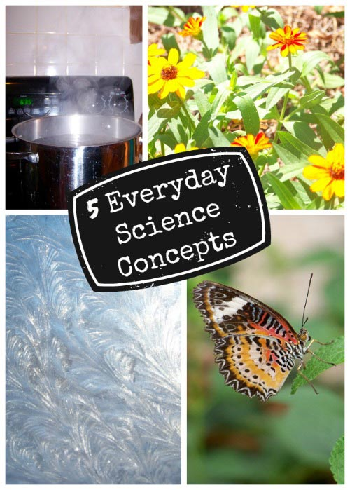 easy science concepts that kids can understand