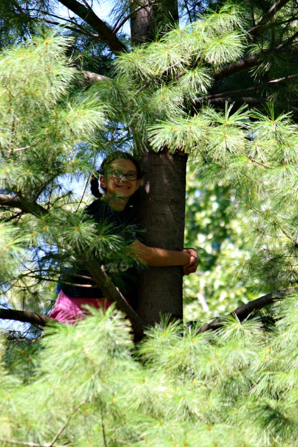 100 Things to do in Spring - let your kids climb a tree