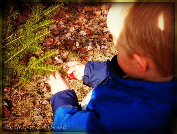 Nature-is-a-Wonderful-Sensory-Teacher