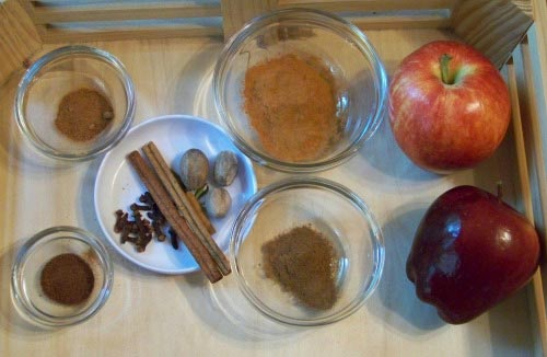 Spice Tray for 5 Senses experiment