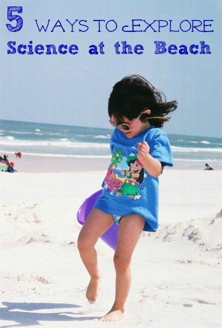 Science activities kids can do at the beach or ocean