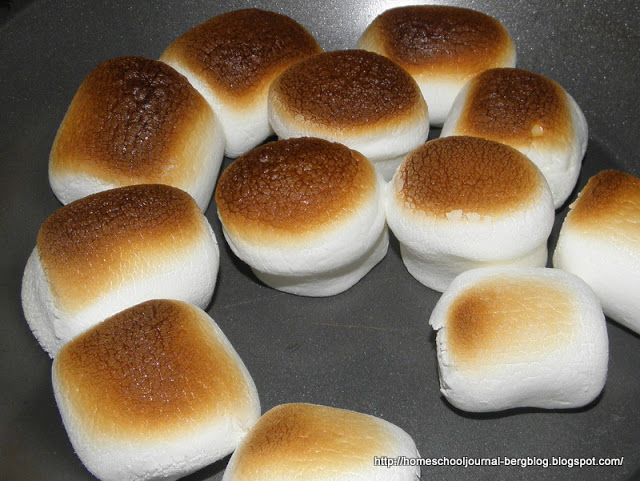 Making Smores in the Oven