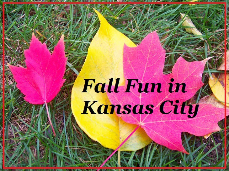 fall-foliage-fun-kansas-city